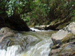 Cachoeira dos Fonseca