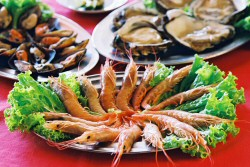 Gastronomia sofisticada
